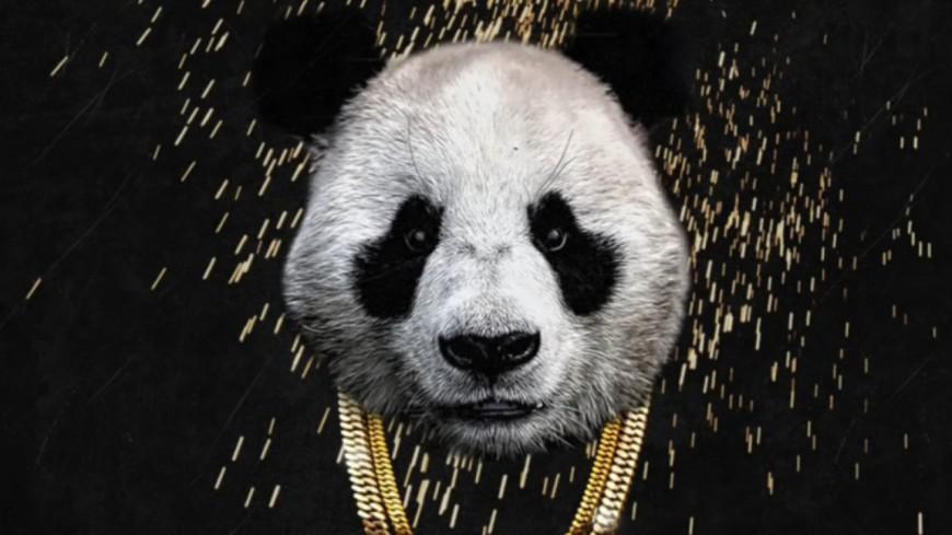 870x489_panda